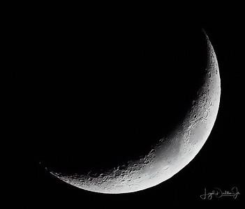 Backyard Waxing Crescent Moon