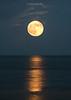 Moon-GPT082015