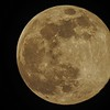 A couple of pictures of tonight's Super Pink Moon! Enjoy!