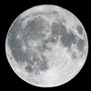 Thanksgiving Moon taken last night