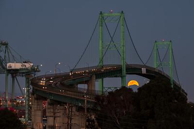 Worm moon rising under the Vincent Thomas Bridge, San Pedro CA
