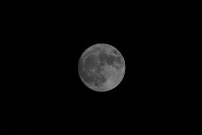Super Moon 11.13-14.16