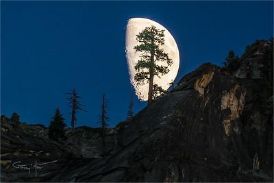 Big Moon, Yosemite
