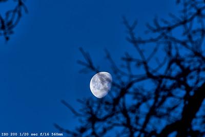 Moon_ 0091-1