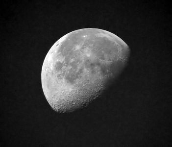 Taken with my 20D and my Bigma Lens.  Black and White version of the above.