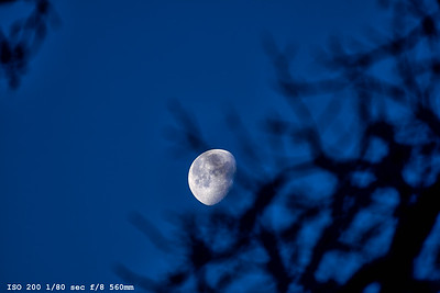 Moon_ 0084-1