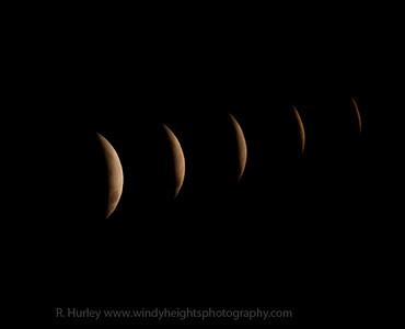 Moon Eclipse 21-12-2010-1w