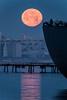 2014-01-16-moon-full-setting-alameda-naval-air-station-twilight-morning-san-francisco-ships-west-hornet-avenue-ferry-point-freighter-moon-san-francisco-skyline-3
