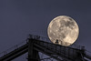 2014-07-11-moon-full-rising-bridge-san-francisco-oakland-bay-bridge-above-tower-bridge-tower-top-1