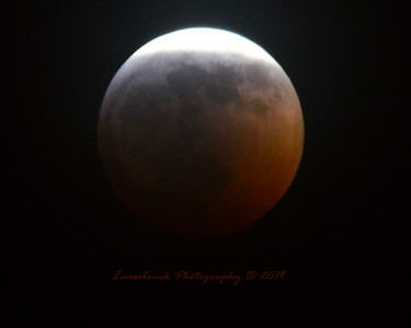 Super Blood Wolf Moon January 20, 2019