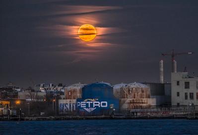 Petrograde