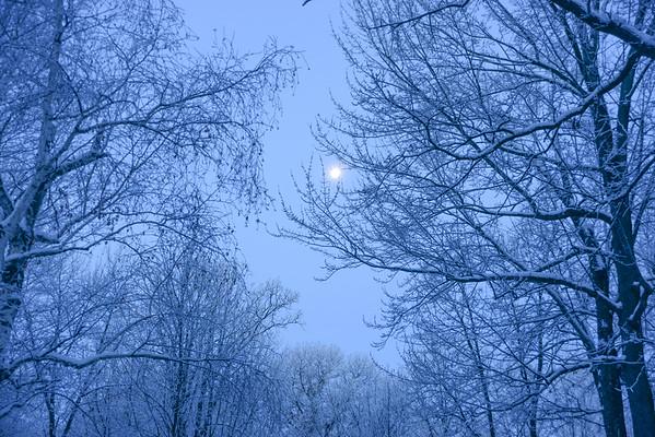 Blue Moonshine Morning