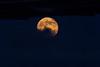 2014-07-12-moon-full-rising-bridge-san-francisco-oakland-bay-bridge-moon-close-1