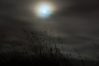 night-moon-glow-2