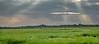 God Rays over Ibera Marsh