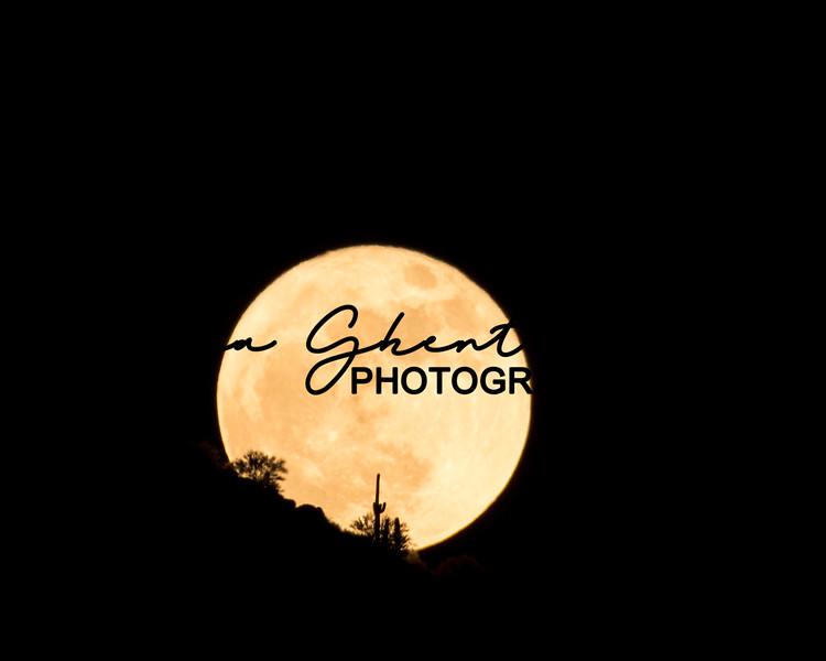 Arizona Super Moon