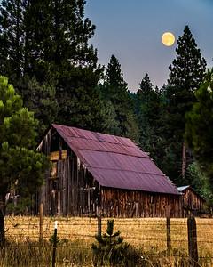 Hornet Creek Moon