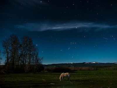 Orion Moonlight