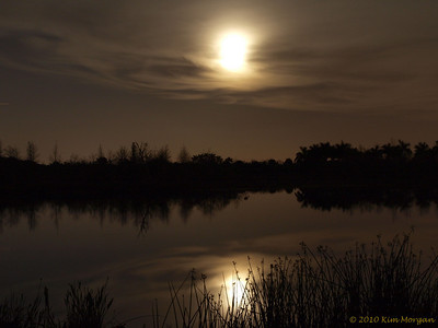 Full moon rising over Green Cay Wetlands.  This photo was chosen as an Approvers Choice on   http://www.wunderground.com/wximage/southflgolfer