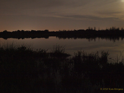 Shades of Night at Green Cay Wetlands.