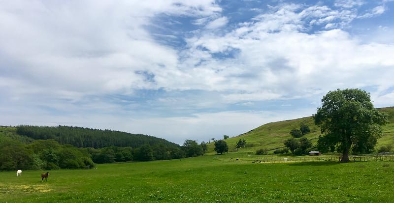 Pastvina Lonsdale farmy s koníkmi a lamamy