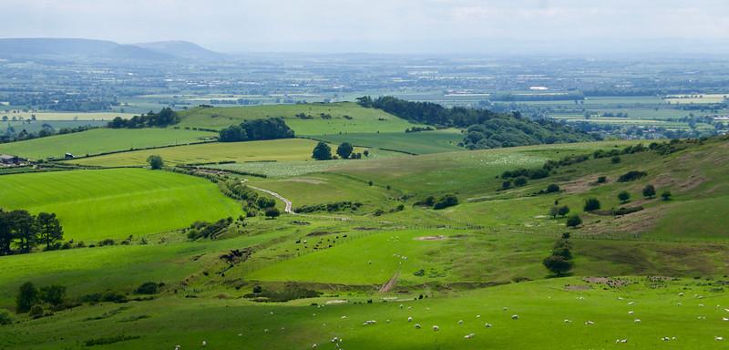 Pastviny a políčka pod Roseberry Topping