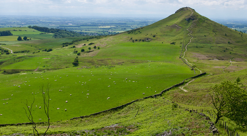 Pastviny a Roseberry Topping