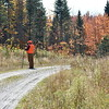 The BDN's John Holyoke scours the woods from the edge of a gravel road after he and his hunting party saw a bull moose during last week's moose hunt in Somerset County. The moose retreated and did not return. (Pete Warner | BDN)