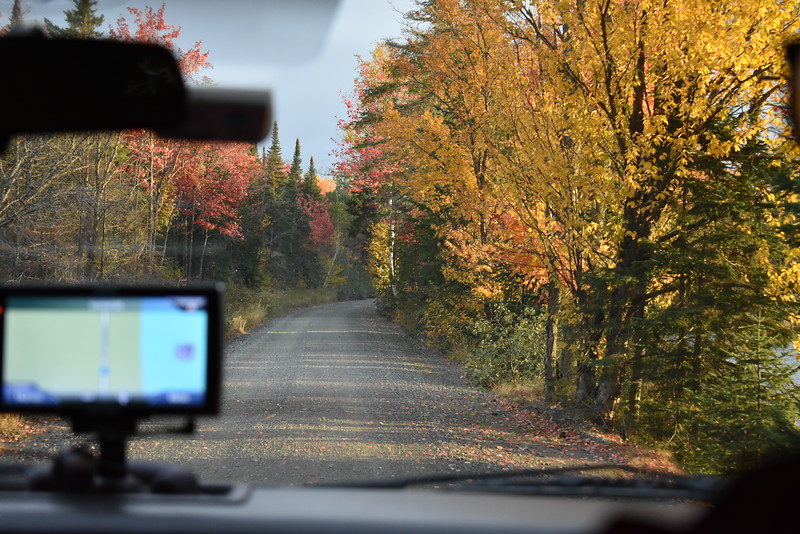 This view from the back seat of Chris Lander's pickup truck was a common one as he and BDN Outdoors Editor John Holyoke participate last week in the Maine moose hunt. (Pete Warner   BDN)
