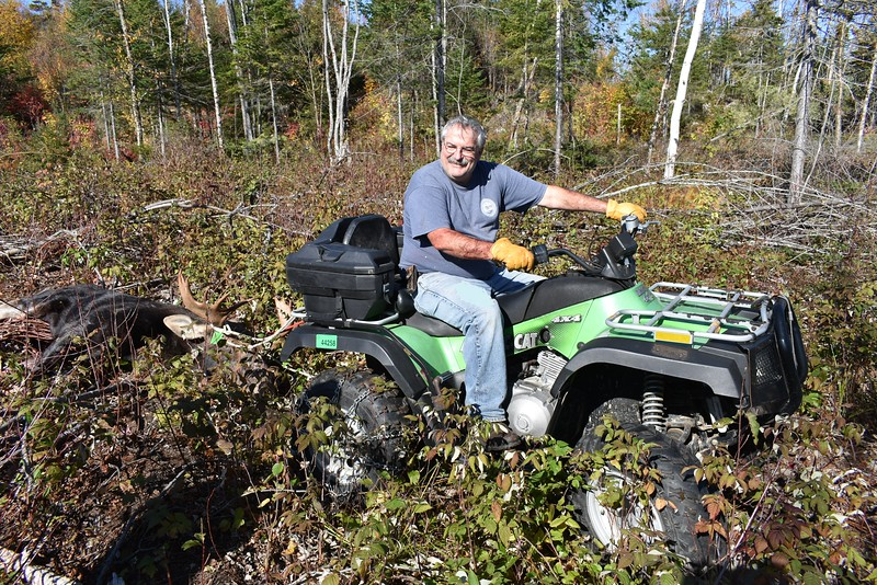Bill Lander of Dedham uses an all-terrain vehicle to help extract a 559-pound bull moose harvested by the BDN's John Holyoke from a clearcut during last week's hunt near Brassua Lake in Somerset County. (Pete Warner | BDN)