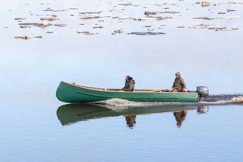 Canoe heads down the Moose River past floating ice.