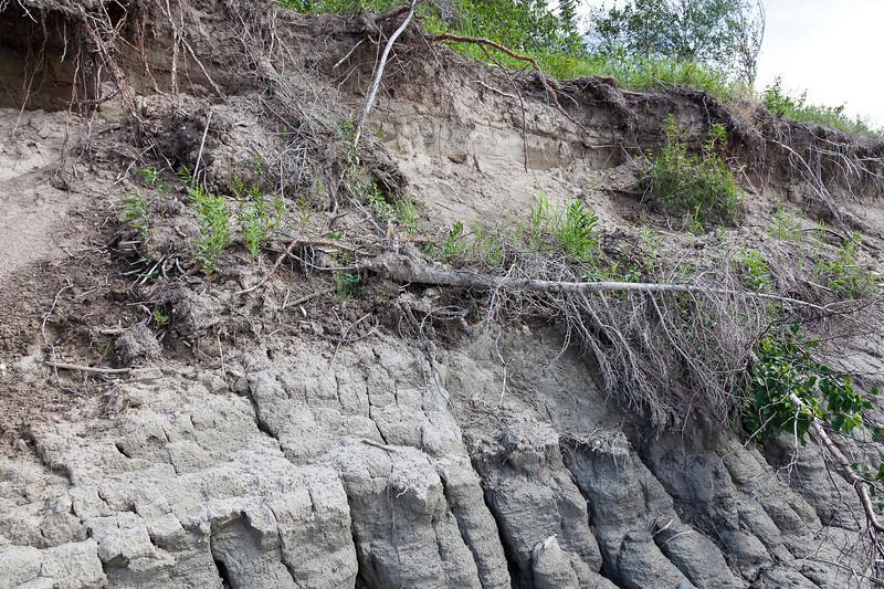 Charles Island shoreline showing erosion.