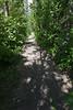 Path on Charles Island