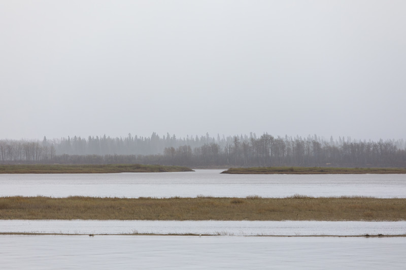 Looking across the Moose River in the rain to island trees, distant ones more obscured.