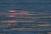 The rising sun reflected on surface water on the ice of the Moose River at Moosonee.