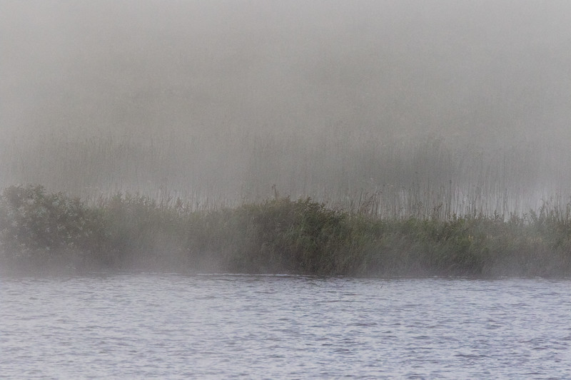 First shot of the morning, sandbar in the fog. Extra black.