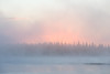 Trees across the river silhouetted against fog and sunrise.