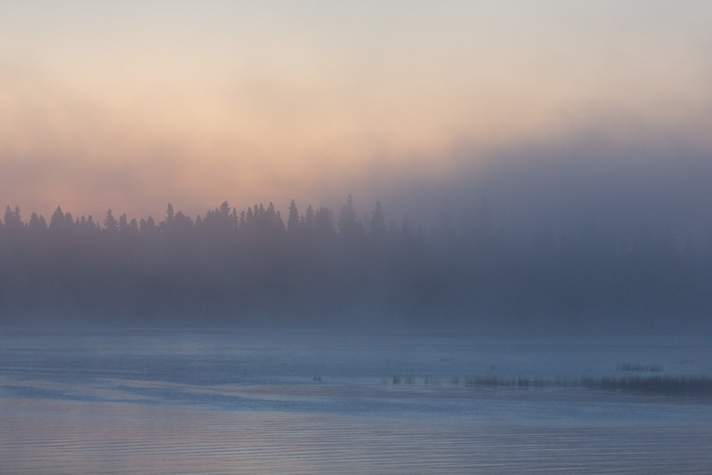 Light fog above the river before sunrise - view towards the trees osf Butler Island. 2016 September 23rd.