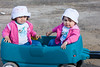Twins of Wendy Solomon in wagon 2006 July 23rd.