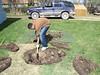 Anthony Isaac starting to dig up old septic tank 2007 May 28th