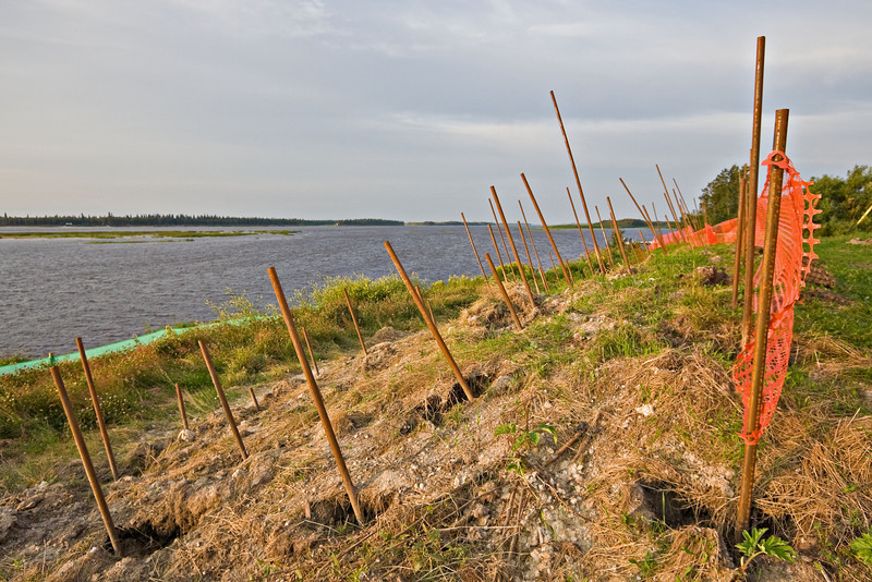 Shoreline stabilization along the Moose River in Moosonee, Ontario. Soil nails (Shotrod) have been inserted into unstable areas of the river bank. The soil nails will be cut off below the surface and filled with grout before being covered over.