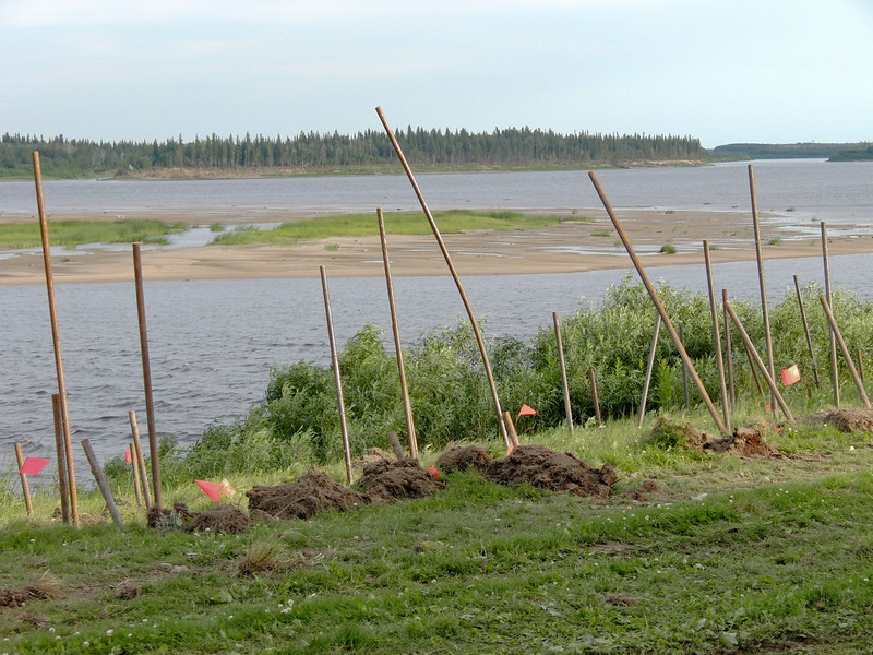 Moosonee Shoreline Stabilization - at end of first day, soil nails shot into the ground. The nails go in until they hit solid ground and the protrubing sections are sheared off afterwards.