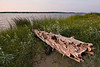 Driftwood along the shore of the Moose River in Moosonee, Ontario