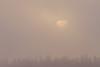 Sunrise on a foggy morning, sun rising over Butler Island in the Moose River across from Moosonee, Ontario.