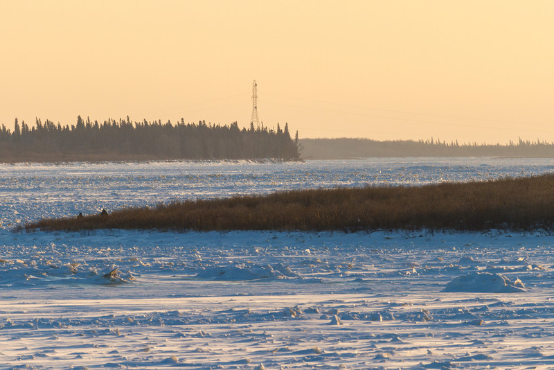 Looking up the Moose River from Moosonee late afternoon.