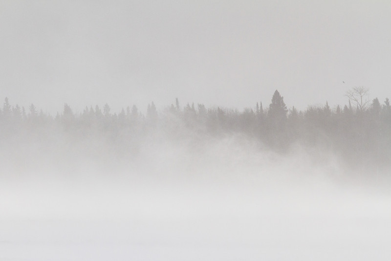 Snow blowing on the Moose River at Moosonee. Bird in the distance at right.