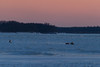 Two snowmobiles coming across the Moose River to Moosonee.
