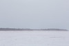Looking towards the Gutway from Moosonee. Snow really blowing.