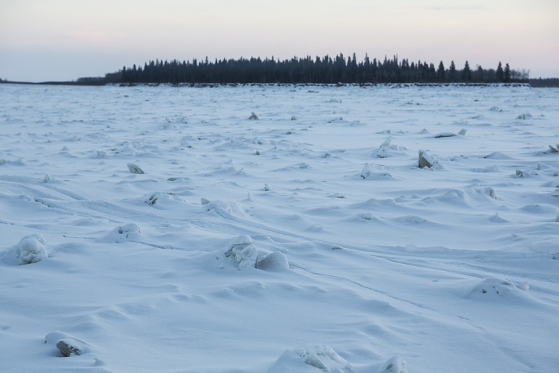 Rough surface of the Moose River looking towards Butler Island.