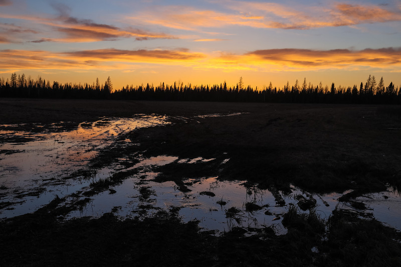 Boggy ground reflects clouds after sunset in Moosonee. In camera HDR jpg.